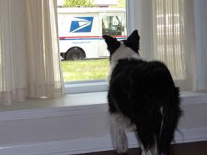 archie-mailtruck