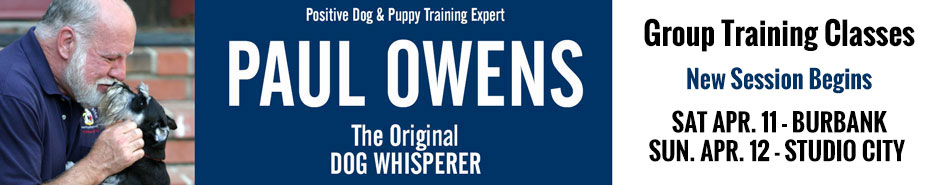 Paul Owens, the Original Dog Whisperer